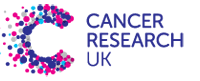 Mr Stone to Ride London 2015 for Cancer Research